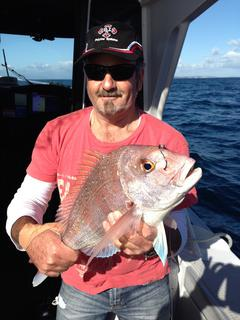 Snapper on the day trip