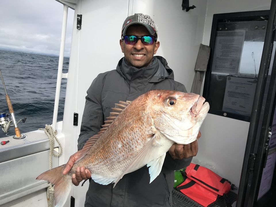 Nice Winter Snapper