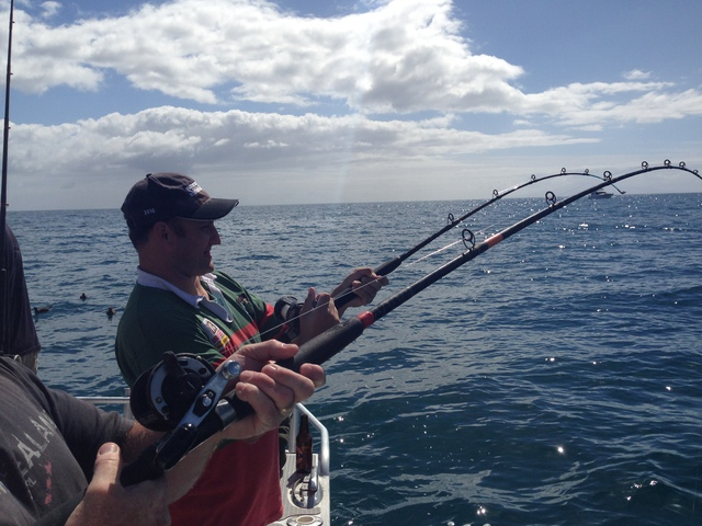 Bending rods - the thrill in fishing