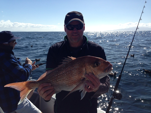 Bottom fished snapper